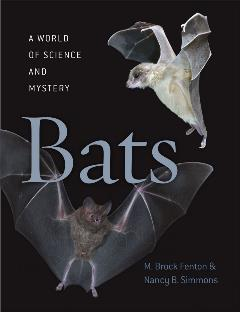 Bats_A World of Science and Mystery