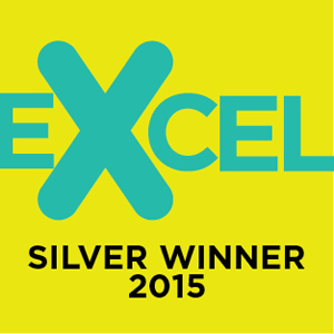 Excel Silver Awards logo