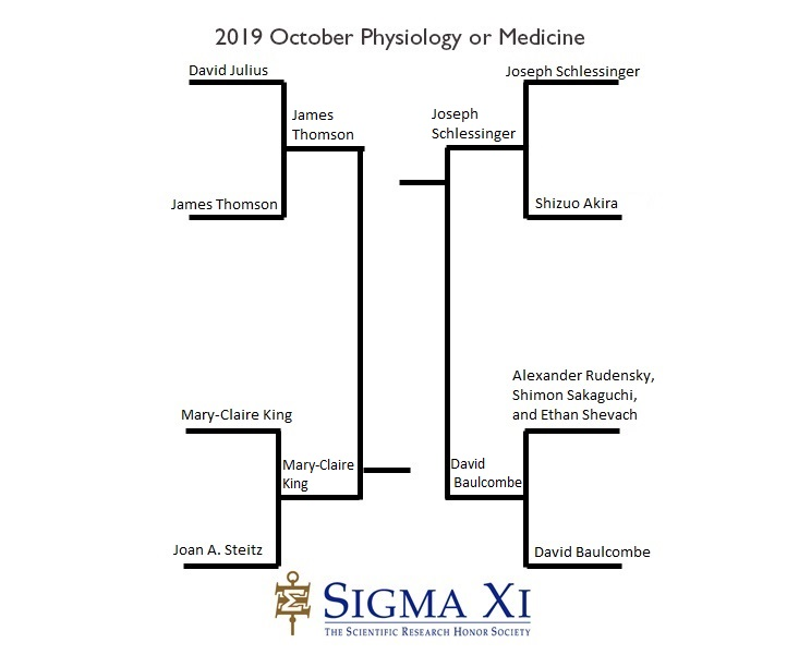 2019 Final Four Bracket Physiology or Medicine