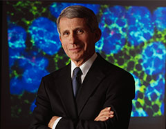 Anthony Fauci portrait